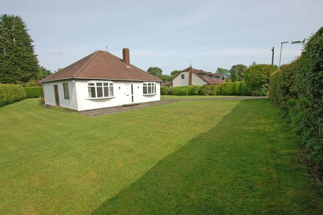 Thumbnail Detached bungalow to rent in Edge Hill, Darras Hall, Newcastle Upon Tyne