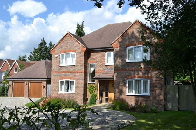 Thumbnail Detached house for sale in Monks Lane, Newbury