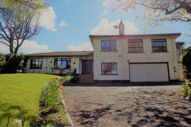 Thumbnail Detached house for sale in Bayswater, Derry / Londonderry