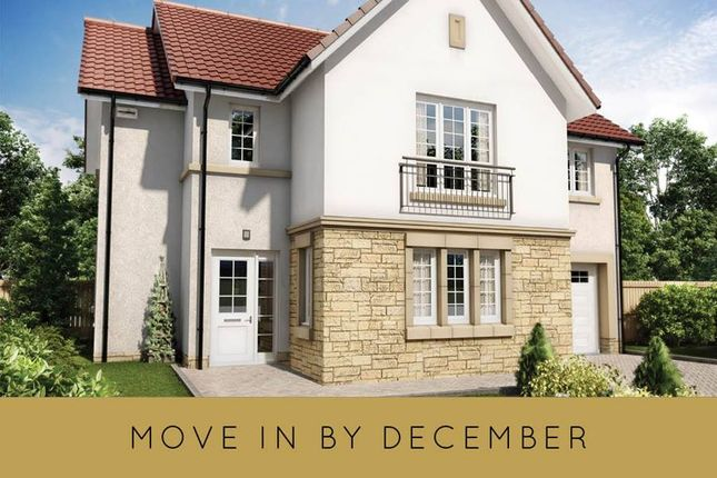 """Thumbnail Detached house for sale in """"The Colville"""" at Hillview Gardens, Nivensknowe Park, Loanhead"""