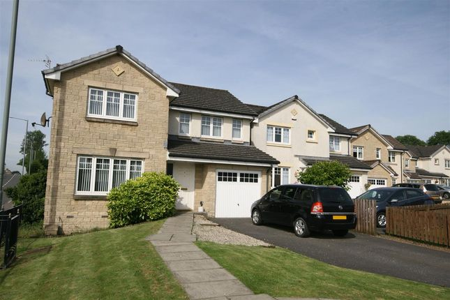 Thumbnail Detached house for sale in Lind Place, Dennyloanhead, Bonnybridge