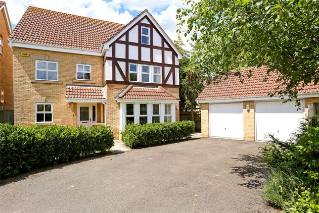 Thumbnail Detached house for sale in Canada Way, Liphook, Hampshire