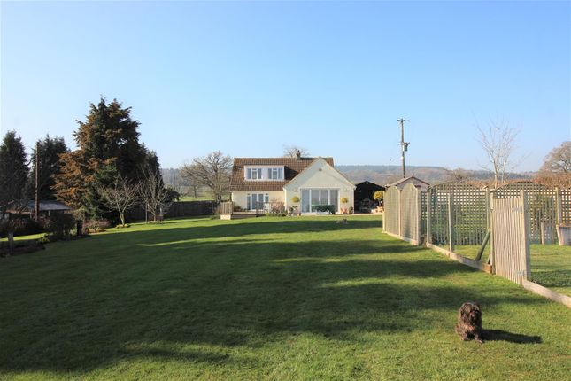Thumbnail Detached bungalow for sale in Bullo Pill, Newnham