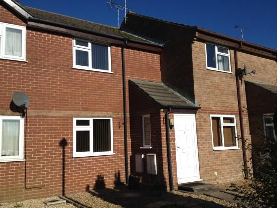 Thumbnail Shared accommodation to rent in Conway Walk, Dorchester