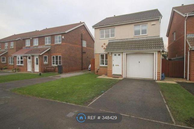 Thumbnail Detached house to rent in Deacon Gardens, Seaton Carew, Hartlepool
