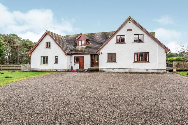 Thumbnail Detached house for sale in Rearquhar, Dornoch, Sutherland