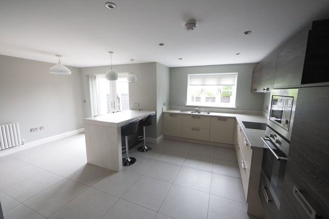 Thumbnail Detached house to rent in High Lane, Maltby, Middlesbrough