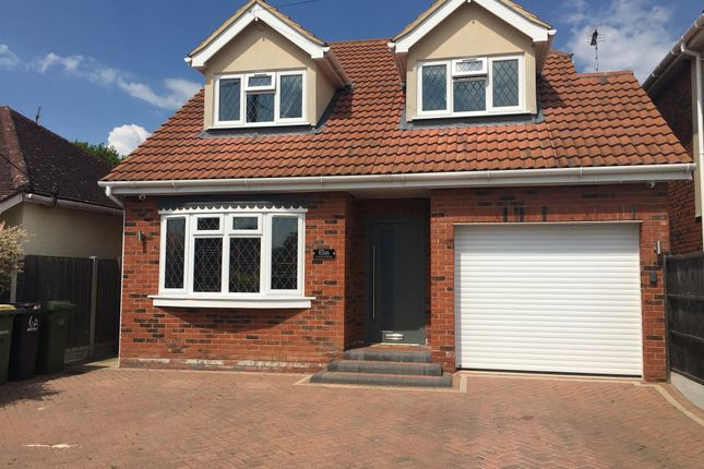 Thumbnail Detached house for sale in Mount Avenue, Hockley