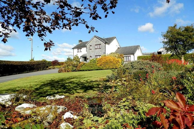 Thumbnail Detached house for sale in Unmarked Road, Rhos, Carmarthenshire