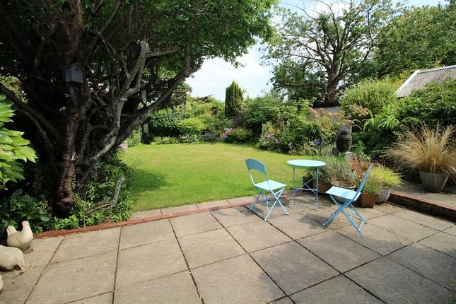 Thumbnail Property for sale in Chalet Bungalow At Thunder Lane, Norwich