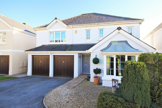 Thumbnail Detached house for sale in Loventor Crescent, Marldon, Paignton