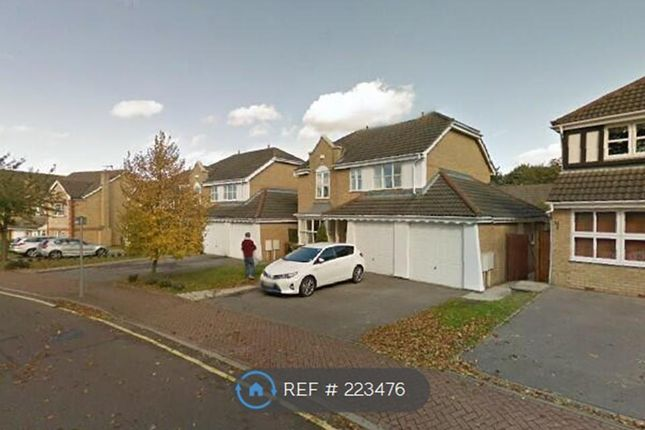 Thumbnail Detached house to rent in Tregony Road, Orpington