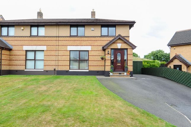 Thumbnail Semi-detached house for sale in Old Mill Meadows, Dundonald, Belfast