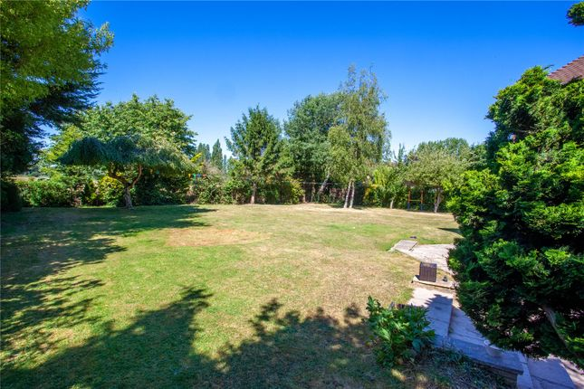 Garden of The Granary, Roydon, Harlow, Essex CM19