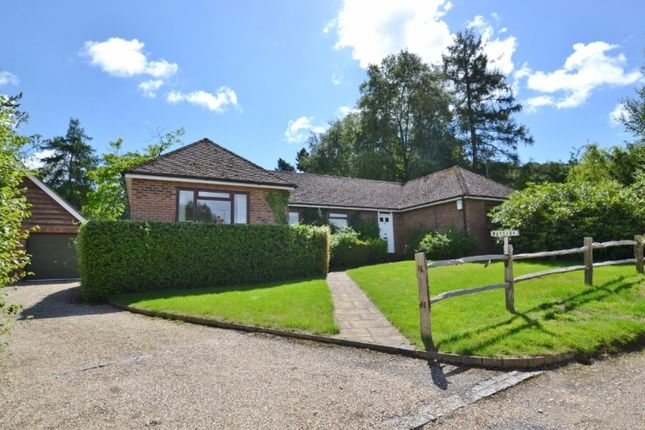 Thumbnail Detached bungalow for sale in Wyncombe Close, Fittleworth, Pulborough