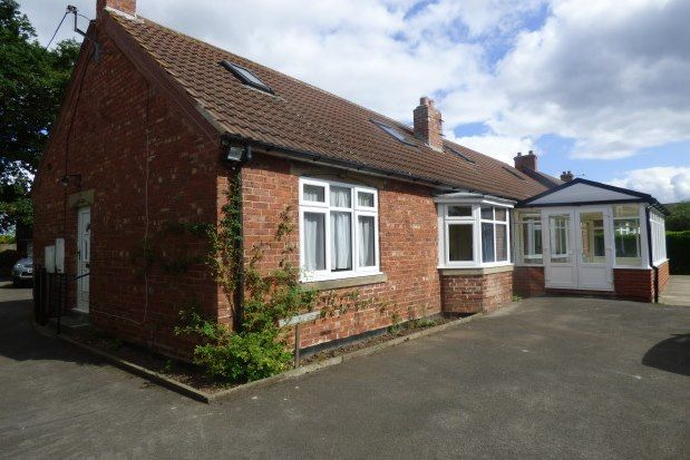 Thumbnail Bungalow to rent in Springfield, Stockton-On-Tees