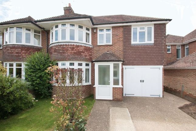 Thumbnail Semi-detached house for sale in Graydon Avenue, Chichester