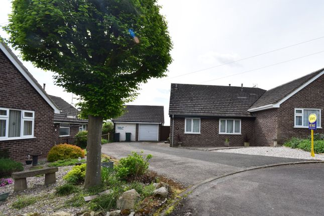 Thumbnail Semi-detached bungalow to rent in Brereton Close, Malpas, Cheshire