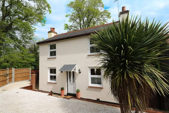 Thumbnail Detached house for sale in Church Road, Benfleet