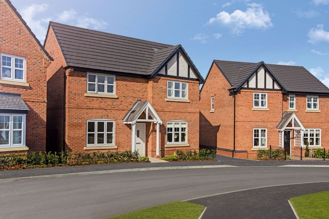 """Thumbnail Detached house for sale in """"The Berrington"""" at Walford Close, Wimborne"""
