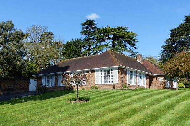 Thumbnail Detached bungalow for sale in Mill Lane, Taplow, Maidenhead