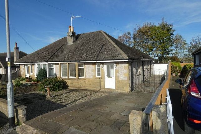 Thumbnail Detached bungalow to rent in Alston Drive, Bare