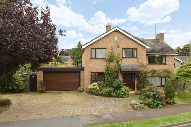Thumbnail Detached house for sale in The Bury, Pavenham, Bedford