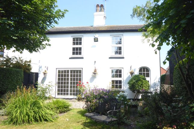Thumbnail Detached house to rent in Yarmouth Road, Caister-On-Sea, Great Yarmouth