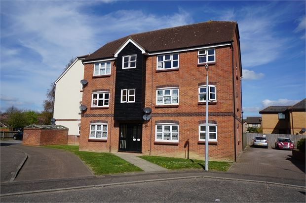 Thumbnail Flat to rent in Harvard Court, Highwoods, Colchester, Essex.