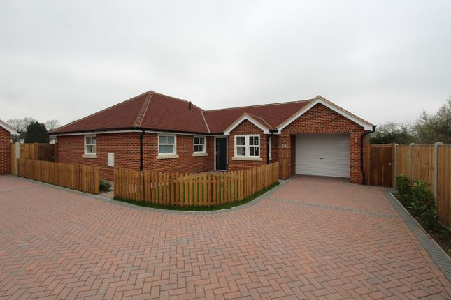 Thumbnail Detached bungalow for sale in Nayland Road, Mile End, Colchester
