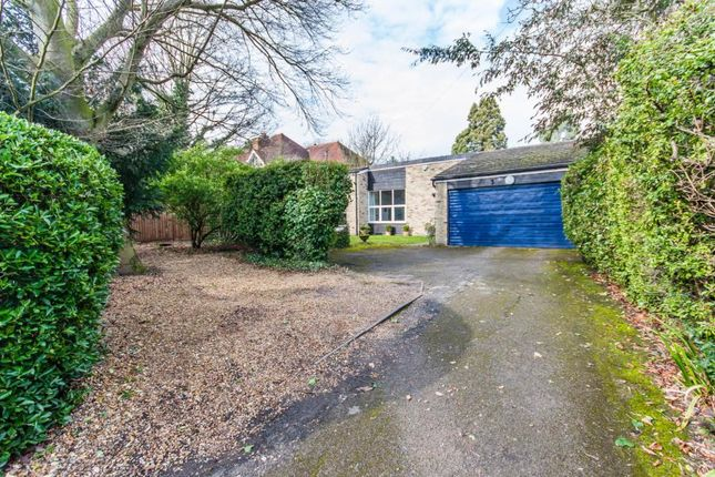 Thumbnail Bungalow for sale in Queen Ediths Way, Cambridge, Cambridgeshire
