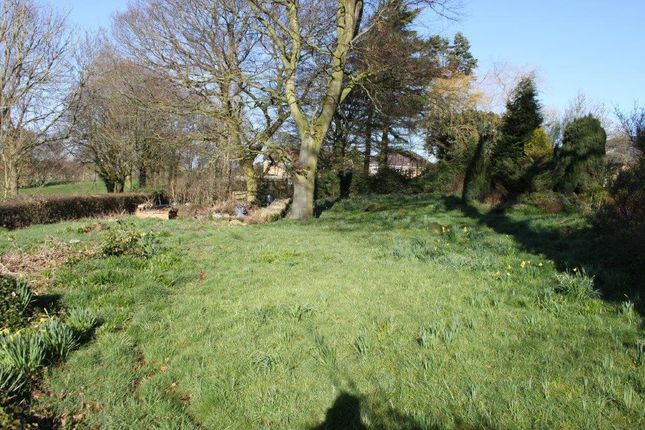 Thumbnail Land for sale in Land At Keats Avenue, Littleover, Derby