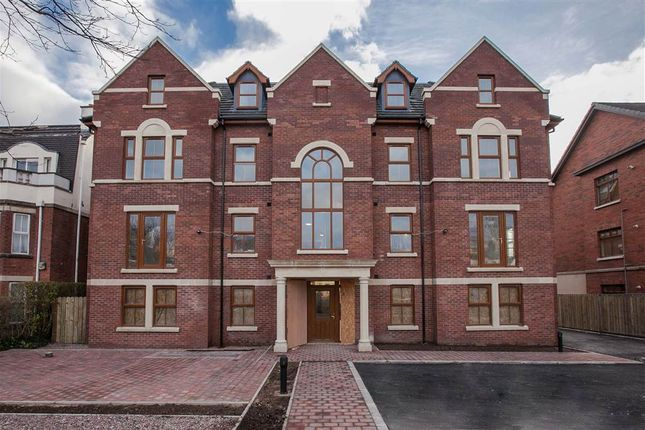Thumbnail Flat to rent in 9, 22 Upper Lisburn Road, Belfast