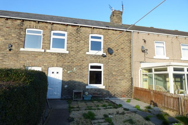 Thumbnail Terraced house to rent in Eighth Row, Ashington