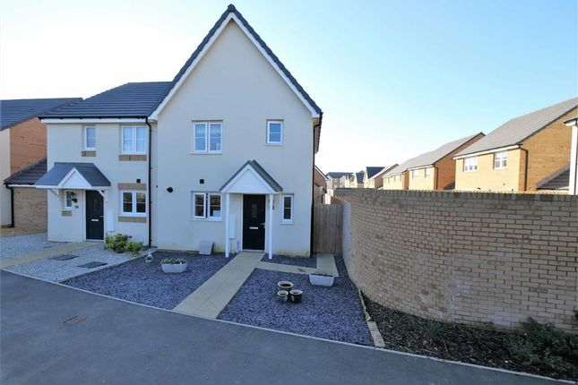 Thumbnail Semi-detached house for sale in Redshank Way, Bude, Cornwall