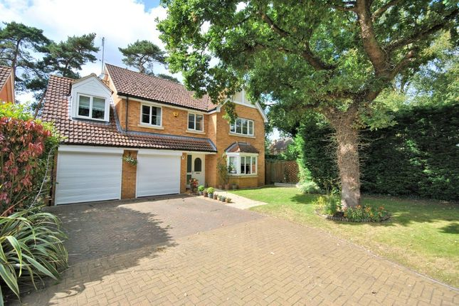 Thumbnail Detached house for sale in Pretoria Grove, South Wootton, King's Lynn