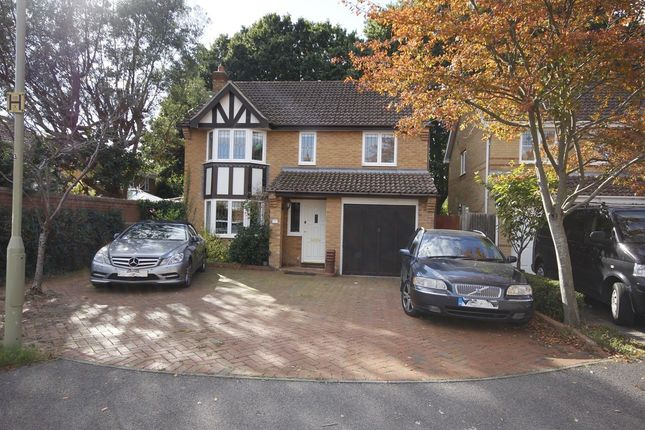 Thumbnail Detached house to rent in Sixpenny Close, Fareham