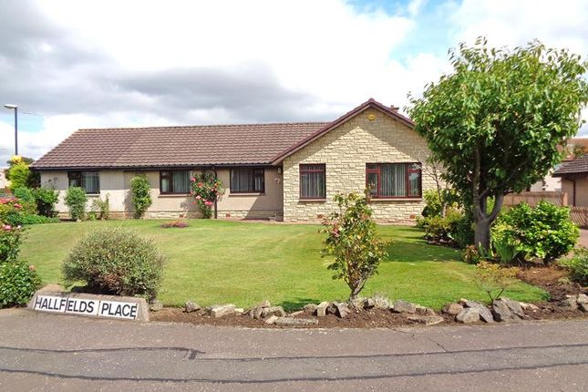 Thumbnail Detached bungalow for sale in Hallfields Place, Kennoway, Leven