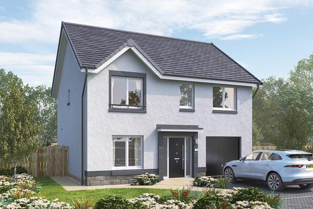 "Thumbnail Detached house for sale in ""The Rosebury"" at Brora Crescent, Hamilton"