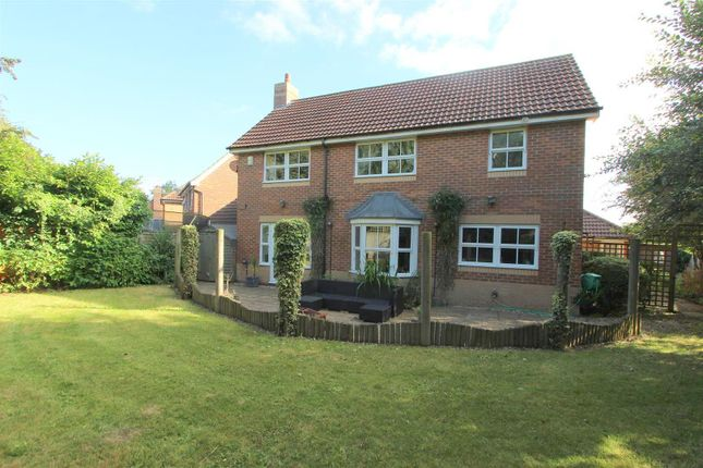 Thumbnail Detached house to rent in Beauly Drive, Darlington