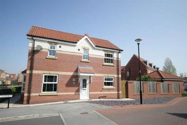 Thumbnail Detached house to rent in Comet Court, Auckley, Doncaster