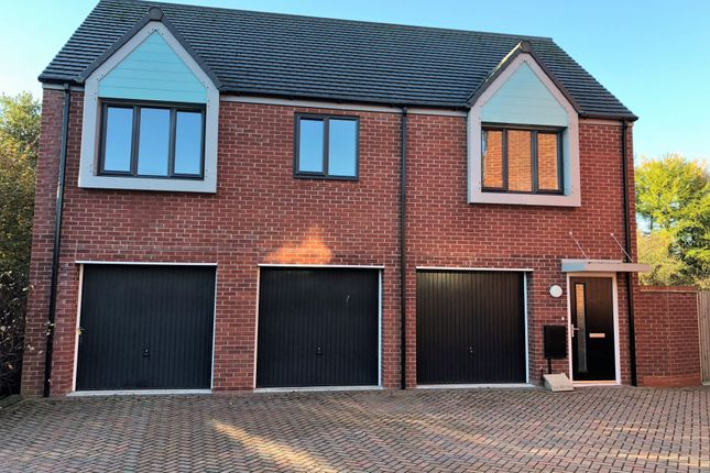 Thumbnail Semi-detached house to rent in Little Flint, Telford