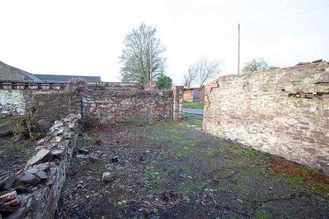 _Mg_9381 of Templehall, Longforgan, Dundee DD2