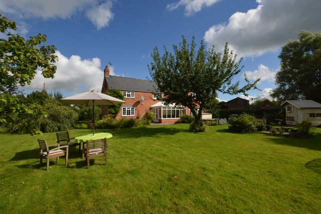 Thumbnail Detached house for sale in Old Hall Lane, Hargrave, Chester