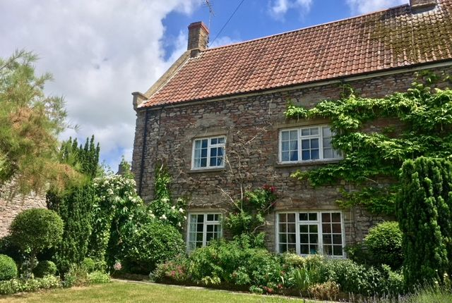 Semi-detached house to rent in Westbury Sub Mendip, Wells