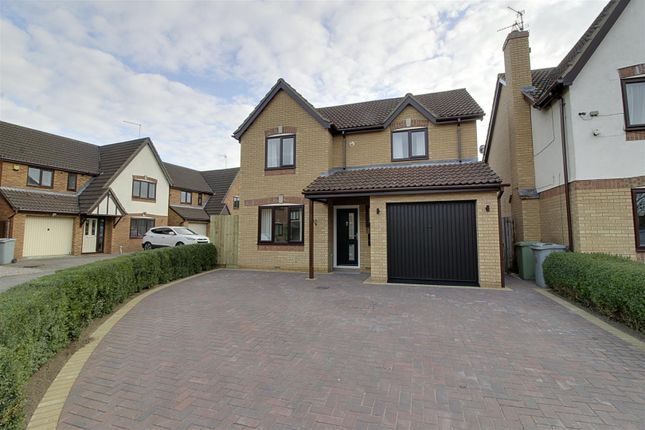 Thumbnail Detached house to rent in Lamport Close, Market Deeping, Peterborough