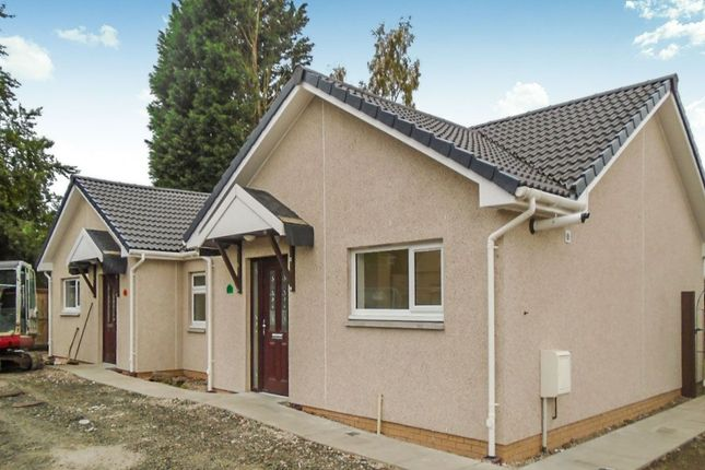 Thumbnail Bungalow to rent in Beeches, Ladybank, Cupar