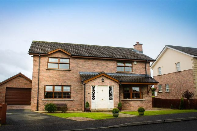 Thumbnail Detached house for sale in Hilltown, Newry