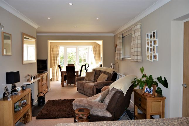 Thumbnail Detached bungalow for sale in Glyn Place, East Melbury, Shaftesbury