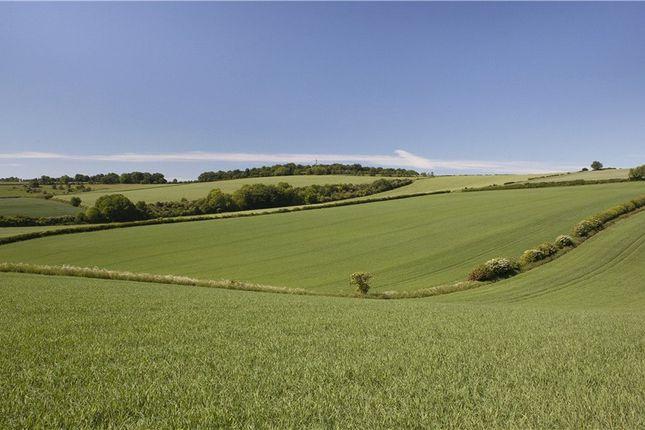 Thumbnail Farm for sale in Forston, Dorchester, Dorset